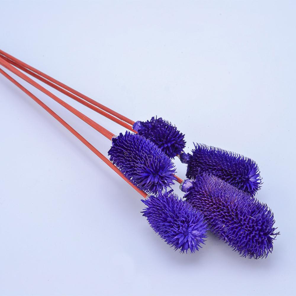 Сухоцветы цвет микс 66см