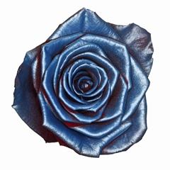 Rosa Baby Satin Blue (Роза Бэйби Сатин Блу) В80