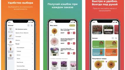 Мы запустили приложение для удобных покупок (ТЕСТ РЕЖИМ)